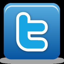 1372756495_twitter